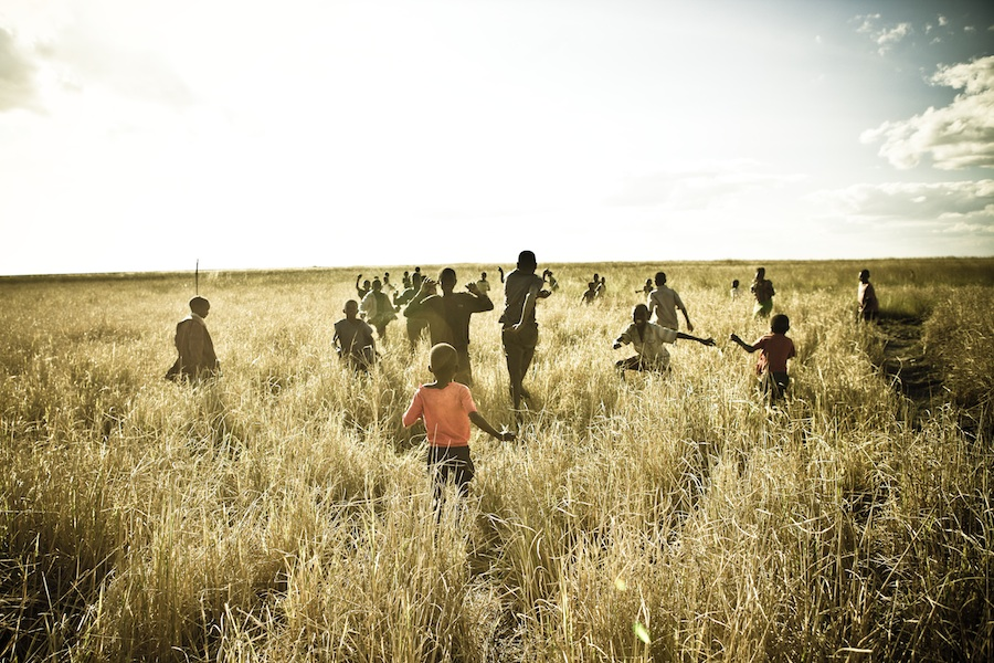 open field in northern zambia by lane a. davis
